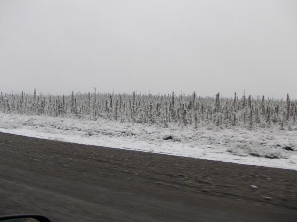 Nieve y frio llegando al paso de frontera  Breaver creek entre Canada y USA.